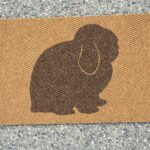 HOLLAND LOP-brown on tan