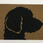 LABRADOODLE-black on tan